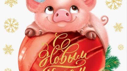 Красивые и прикольные картинки на тему Новогодняя свинья - сборка 15