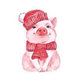 Красивые и прикольные картинки на тему Новогодняя свинья - сборка 2