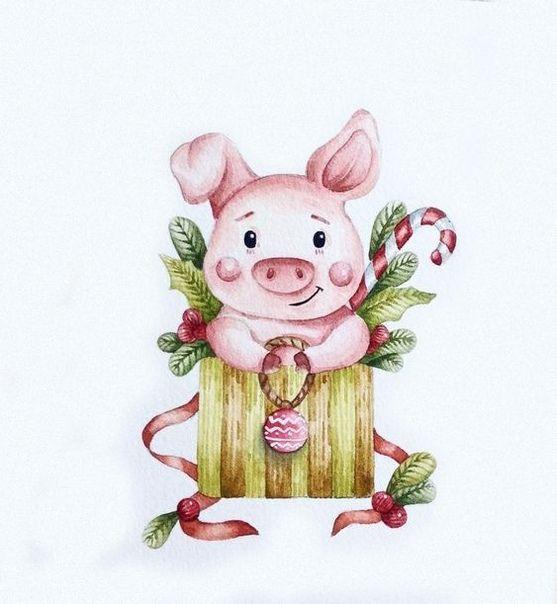Красивые и прикольные картинки на тему Новогодняя свинья - сборка 7