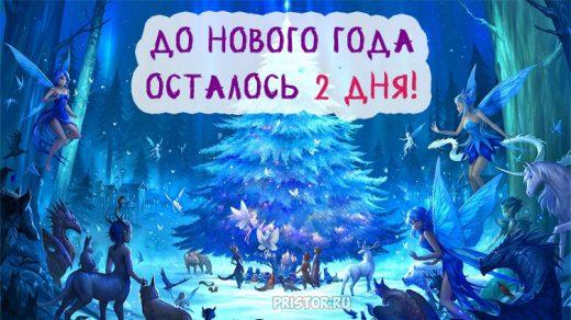 Красивые картинки До нового года осталось 2 дня - подборка 9