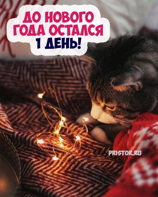 Красивые картинки До нового года остался 1 день - подборка 7