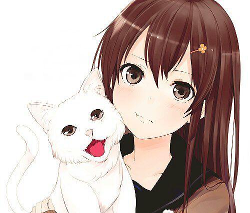 Красивые картинки девушки аниме с коричневыми волосами 17