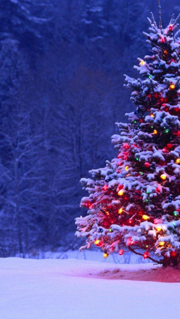 Красивые новогодние и рождественские картинки на телефон 11