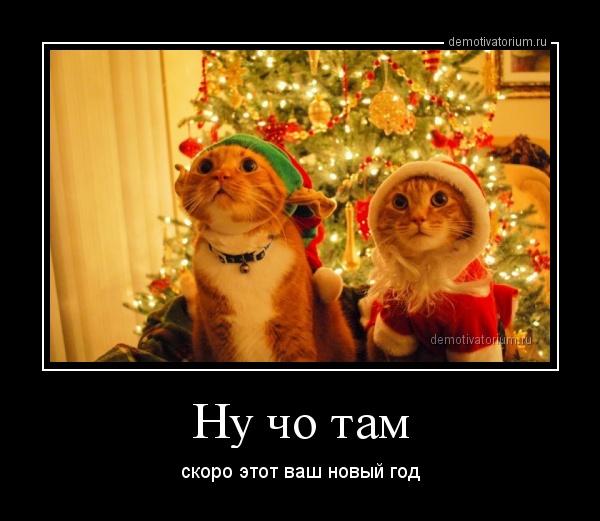 Смешные демотиваторы про Новый год до слез - подборка №52 2