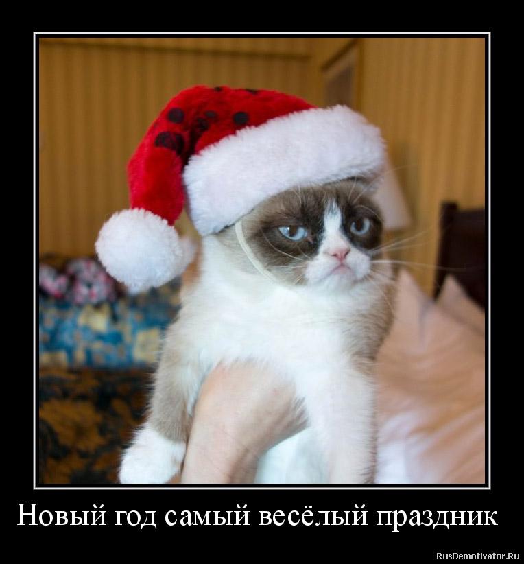 Смешные демотиваторы про Новый год до слез - подборка №52 8