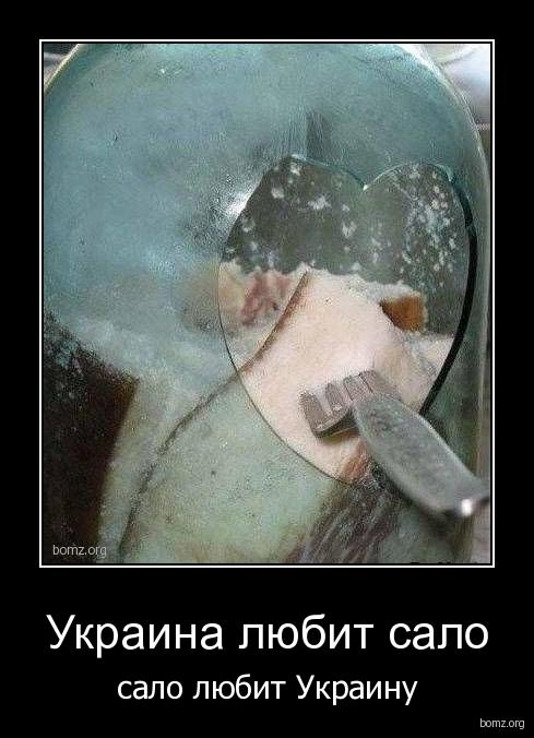 Смешные и прикольные демотиваторы про Украину - подборка 20 штук 15