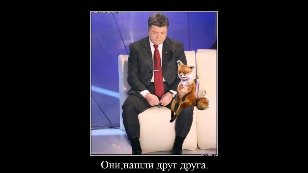 Смешные и прикольные демотиваторы про Украину - подборка 20 штук 17