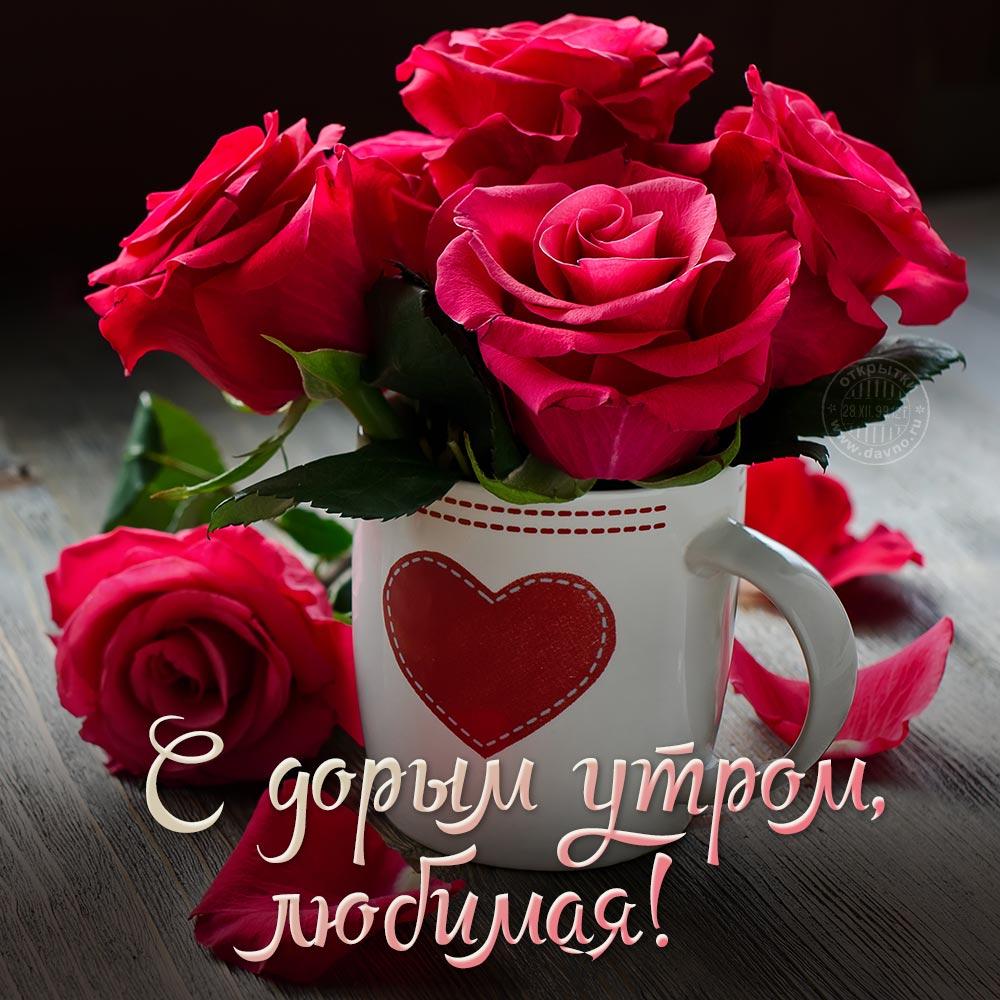 Фото с цветами и надписью доброе утро любимая