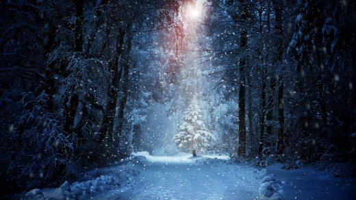 Зимняя ночь картинки красивые и удивительные - подборка 20 фото 2