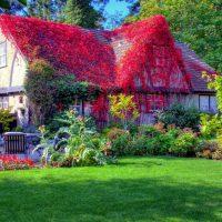Картинки и фотографии красивого сада, удивительное оформление 8