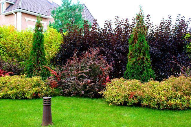 Картинки и фотографии красивого сада, удивительное оформление 9