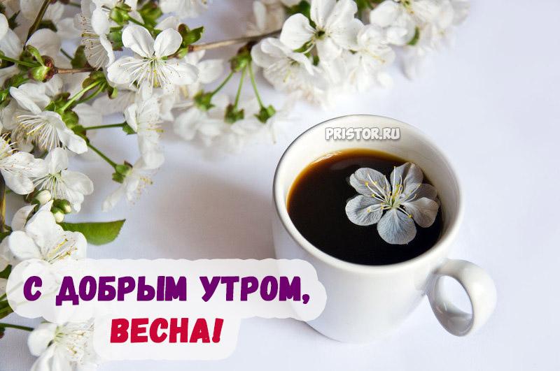 Красивые картинки С добрым утром, весна - приятные открытки 12
