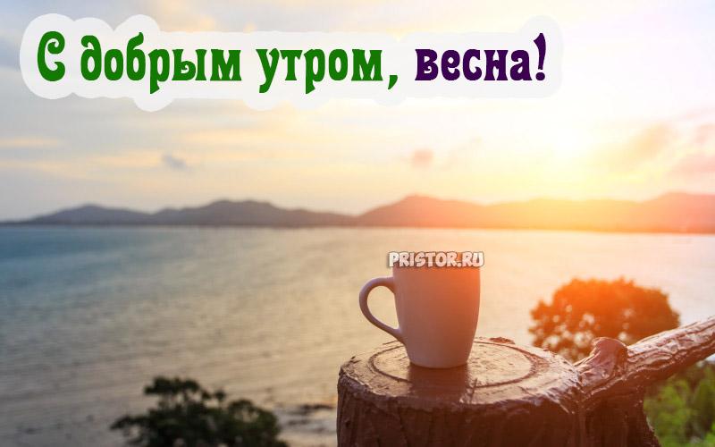 Красивые картинки С добрым утром, весна - приятные открытки 9
