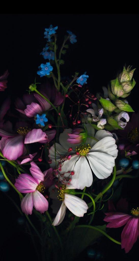 Красивые картинки на телефон цветы на главный экран - подборка 2