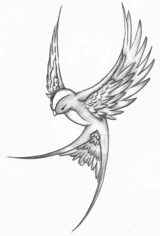 Красивые рисунки простым карандашом - срисовки, картинки 6