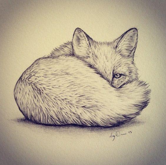 Красивые рисунки простым карандашом - срисовки, картинки 7