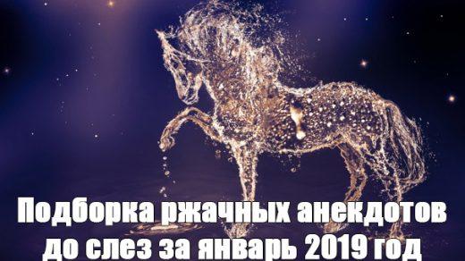 Подборка ржачных анекдотов до слез за январь 2019 год - сборка №135 заставка