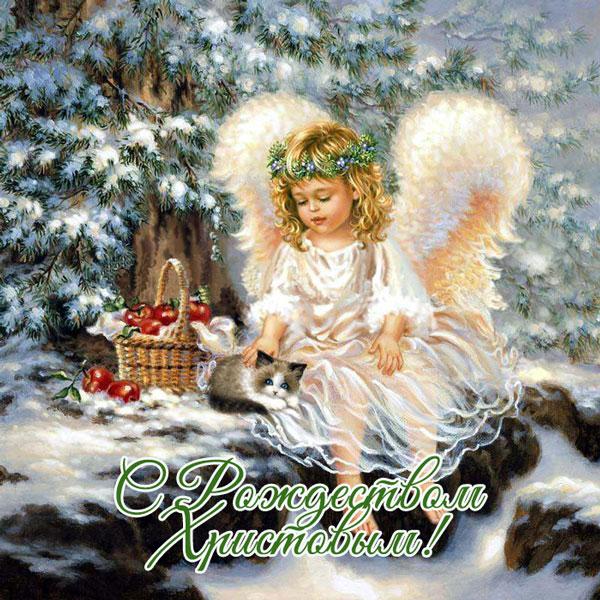 Поздравления с Рождеством Христовым - красивые картинки, открытки 9