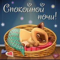 Спокойной зимней ночи - красивые картинки и открытки 4