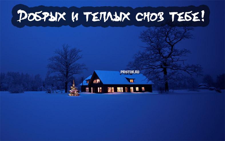 Спокойной зимней ночи - красивые картинки и открытки 5