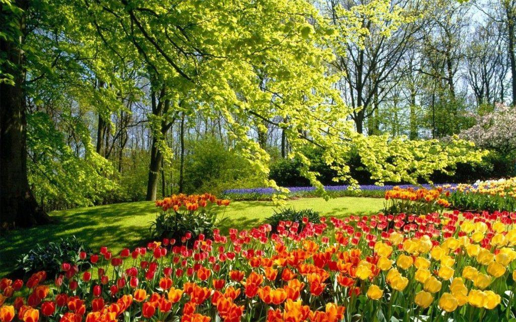 Удивительная и красивая подборка картинок Весна - 25 фото 16
