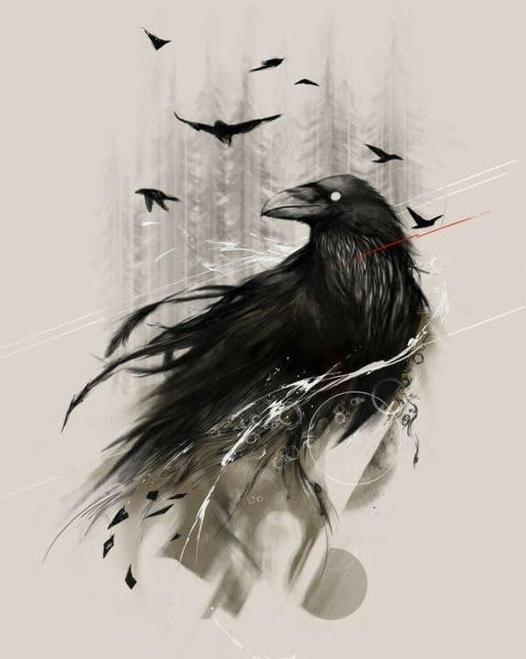 Классные и крутые картинки воронов, фото воронов - подборка 17