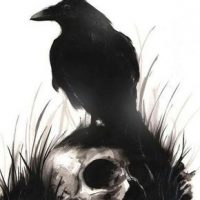 Классные и крутые картинки воронов, фото воронов - подборка 22