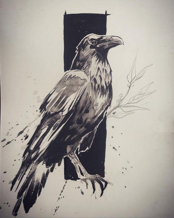 Классные и крутые картинки воронов, фото воронов - подборка 23