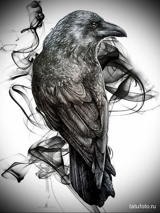 Классные и крутые картинки воронов, фото воронов - подборка 4
