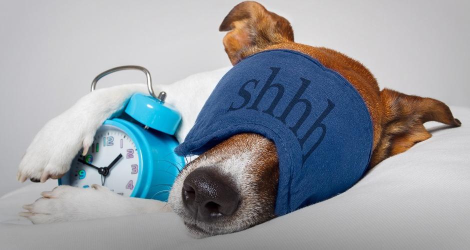 Почему важно просыпаться в 6 утра - основные причины 1