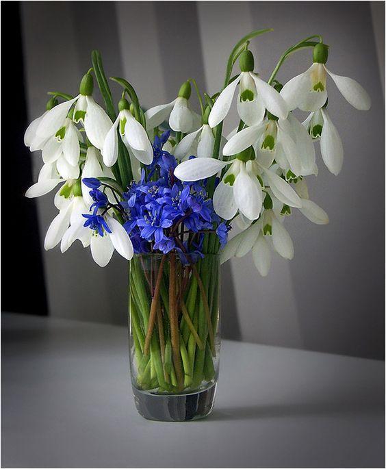 Весенний букет цветов - красивые 20 фото и картинок 1