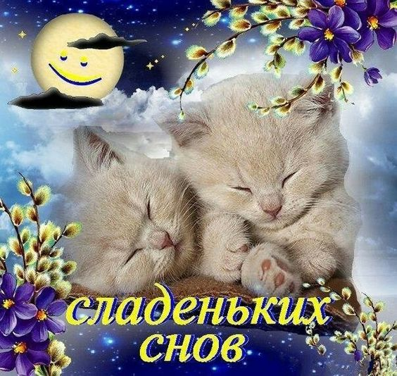 Картинки Спокойной Ночи - красивые и оригинальные 20 фото (19)