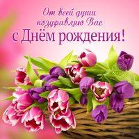 Картинки С Днем Рождения Вас - самые красивые и милые 11
