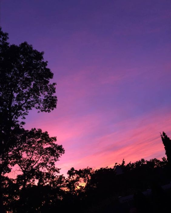 Красивые картинки, фото на тему Розовое небо - сборка (14)