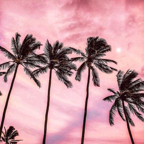 Красивые картинки, фото на тему Розовое небо - сборка (17)