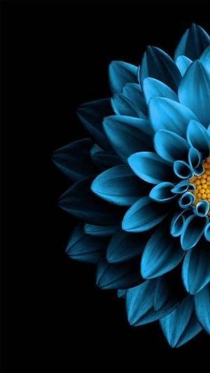 Красивые обои фон синий - подборка 25 картинок (10)
