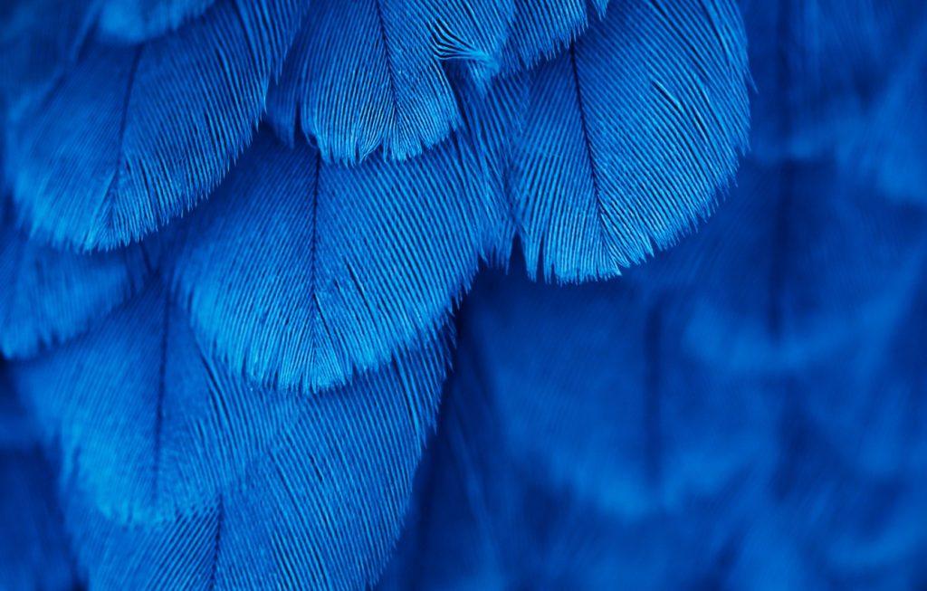 Красивые обои фон синий - подборка 25 картинок (25)