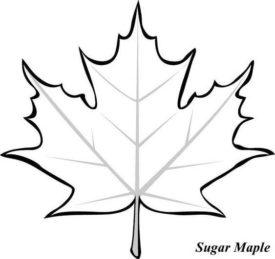Шаблон кленовый лист, интересные рисунки шаблоны кленовый лист 12