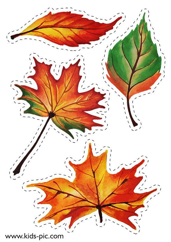 Шаблон кленовый лист, интересные рисунки шаблоны кленовый лист 4
