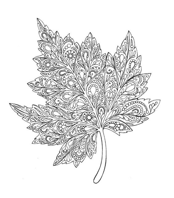 Шаблон кленовый лист, интересные рисунки шаблоны кленовый лист 6