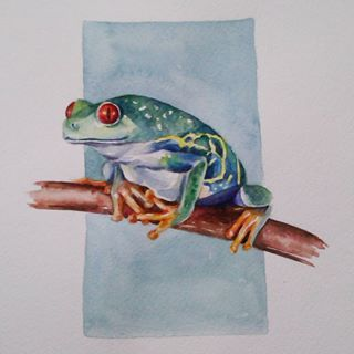 Лягушка рисунок, картинки, изображения - подборка 25 фото 22