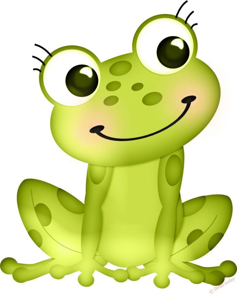 Лягушка рисунок, картинки, изображения - подборка 25 фото 25
