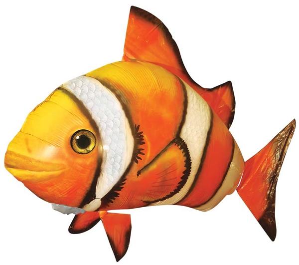 Картинки рыбки для детей на белом фоне (3)