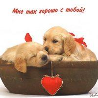Мне с тобой хорошо   красивые открытки и картинки (7)