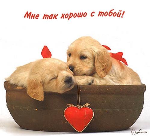 Мне с тобой хорошо - красивые открытки и картинки (7)