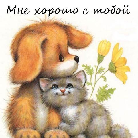 Мне с тобой хорошо - красивые открытки и картинки (8)