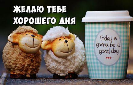 Открытки с пожеланием хорошего дня и отличного настроения (1)