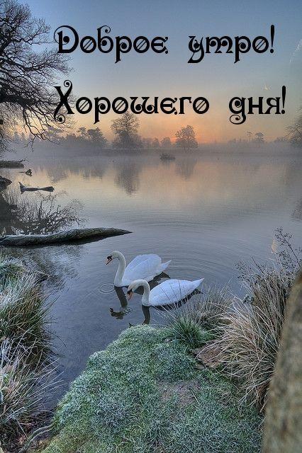 Открытки с пожеланием хорошего дня и отличного настроения (11)