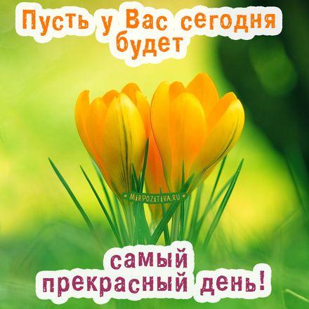 Открытки с пожеланием хорошего дня и отличного настроения (17)