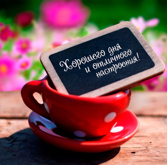 Открытки с пожеланием хорошего дня и отличного настроения (6)
